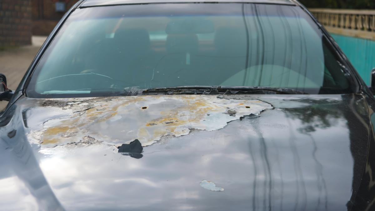visual image of sun damage on car